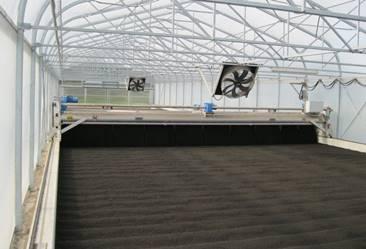 Invernadero para secado de lodos con sistema de revolcado y ventilación